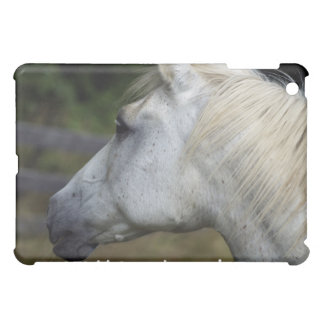 Weißes PferdtieriPad Fall iPad Mini Hülle