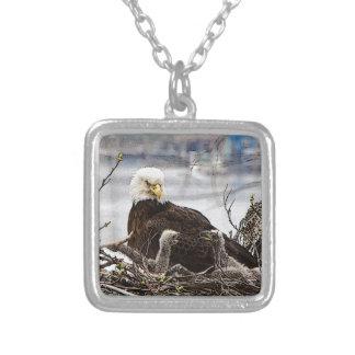 Weißkopfseeadler mit eaglets versilberte kette