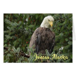 Weißkopfseeadler von Juneau, Alaska Karte