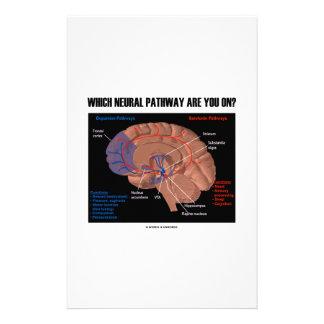 Welche neurale Bahn sind Sie eingeschaltet? Individuelles Büropapier