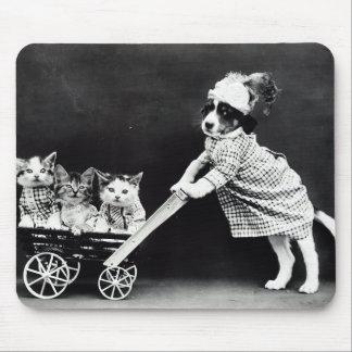 Welpe mit drei Kätzchen in einem Wagen Mousepad