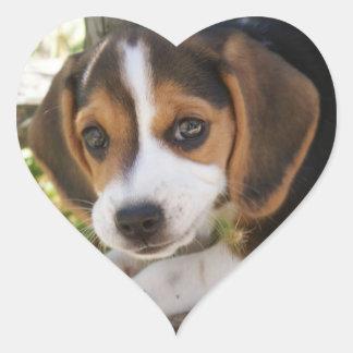 Welpen-HundeBeagle Herz-Aufkleber