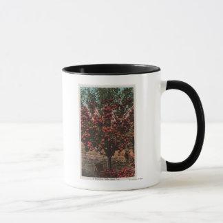 Wenatchee, WAA Wenatchee Tal-Apfelbaum Tasse