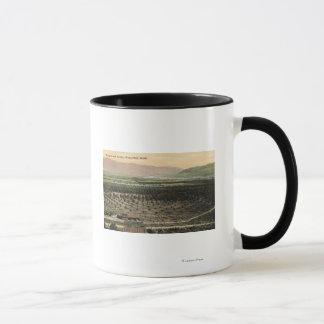 Wenatchee, WashingtonAerial Ansicht eines Tasse