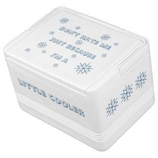 Wenig cooler kühlbox