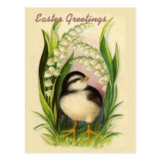 Wenig Ostern-Vogel-Vintage Postkarte