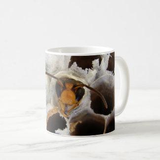 Wespe, die von der Nest-Wanzen-Tasse auftaucht Tasse