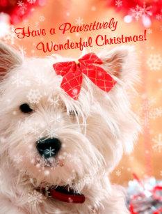 Süße Weihnachtswünsche.Weihnachtswünsche Geschenke Zazzle At