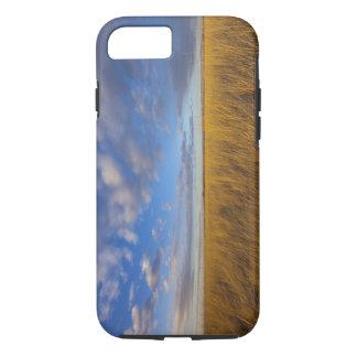 Wheatgrass und drastische Himmel in Freezeout See iPhone 8/7 Hülle