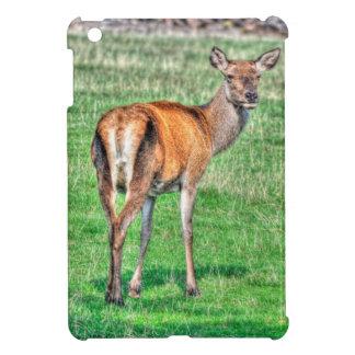 Wilde Rotwild-wild lebende Tiere für Im iPad Mini Hülle