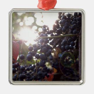 Wilde Trauben Quadratisches Silberfarbenes Ornament
