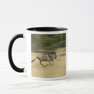 Wildebeest in der Bewegung, Connochaetes taurinus, Tasse