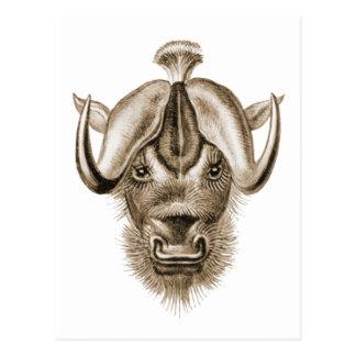 Wildebeest Postkarte