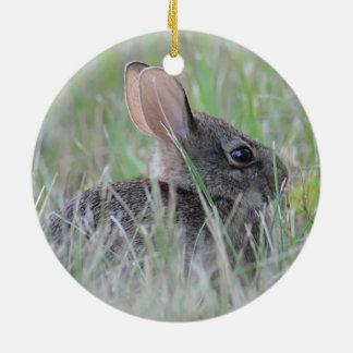 Wildes Kaninchen Rundes Keramik Ornament