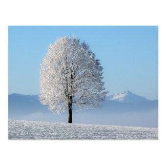 Winter-Baum-Version zwei Postkarte
