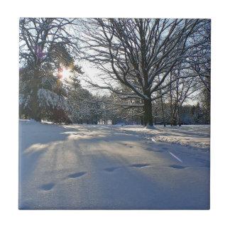 Winter im Park Kleine Quadratische Fliese