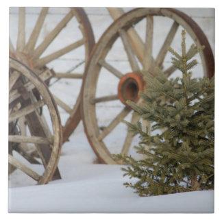 Winter in den Land-Lastwagen-Rädern und der Kiefer Keramikfliese