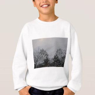 Winter in Idaho Sweatshirt