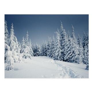 Winter-Landschaft Postkarte