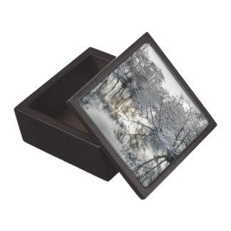 Winter-Reflexionen Kiste