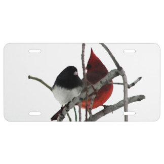Winter-Vögel US Nummernschild