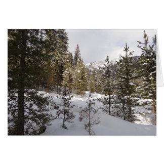 Wintersnowy-Gebirgsszene in Montana Karte