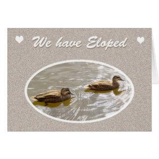 Wir Eloped, zwei schwimmende Enten Grußkarte
