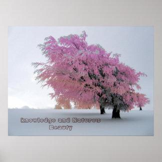 Wissens-und der Natur Schönheits-Plakat Poster