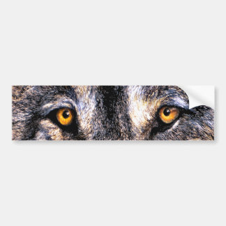Wolf-Augen Autoaufkleber