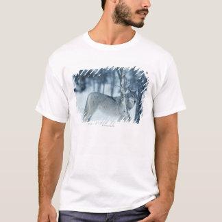 Wolf (Canis Lupus) während des Winters T-Shirt