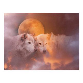 Wolf-Wolf-Grafik Postkarte
