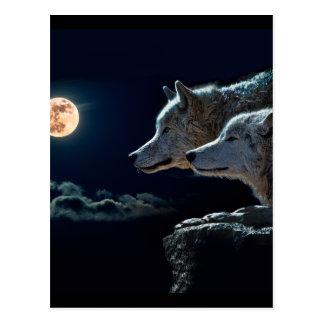 Wolf-Wölfe, die am Vollmond heulen Postkarte