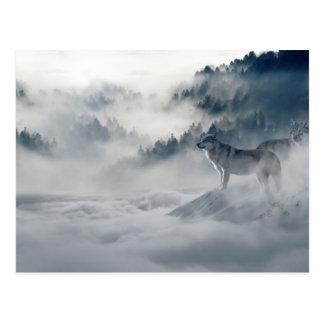 Wölfe in der Winter-Postkarte Postkarte