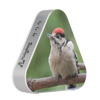 Woodpecker ~ Bunspecht ~ pic épeiche ~ by GLINEUR Bluetooth Lautsprecher
