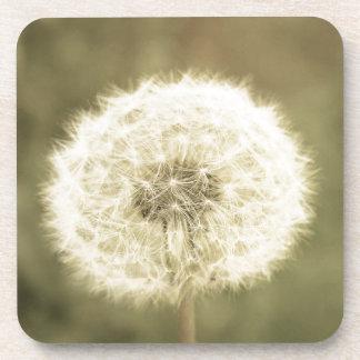 Wunsch der Blume aged5 Untersetzer