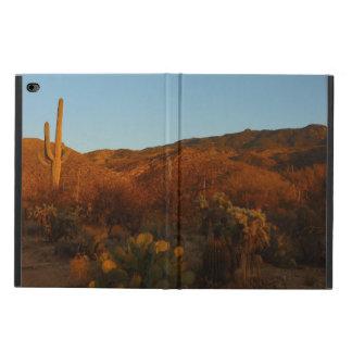 Wüsten-Landschaft des Saguaro-Sonnenuntergang-I