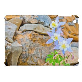 Wyoming, großartiger Teton Nationalpark 1 Hülle Für iPad Mini