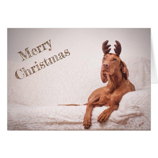 "Xmas Card / Christmas Card ""Magyar Vizsla"" Karte"