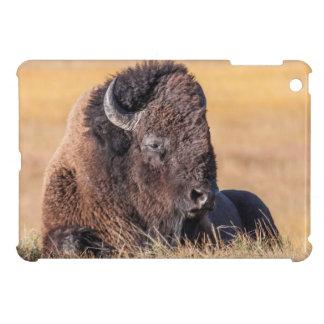 Yellowstone Nationalpark USA, Wyoming, Bison iPad Mini Hüllen