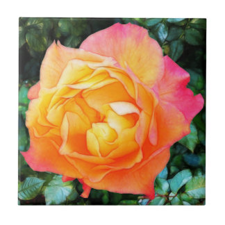 Yeloow rosa extravagante Rose Fliese