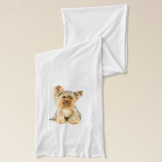 Yorkshire Terrier Schal