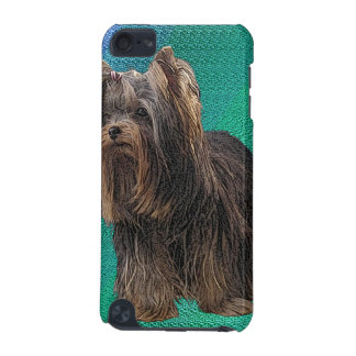 Yorkshire-Terrier-Speck-Kasten iPod Touch 5G Hülle
