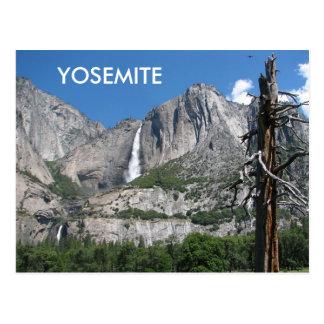 Yosemite-Postkarte! Postkarte