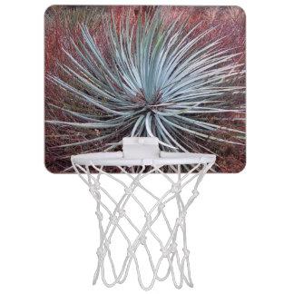 Yucca in der Wüste Mini Basketball Ringe