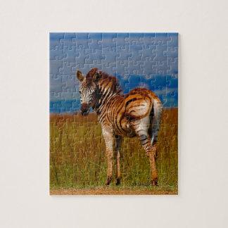 Zebra auf dem Berg Puzzle