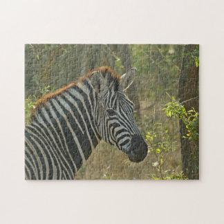 Zebra-Puzzlespiel Puzzle