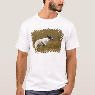 Zeiger. Canis Lupus familiaris T-Shirt