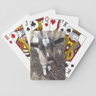 Ziegen-Foto-Spielkarten Kartendeck