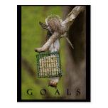 ZIELE inspirierend lustige Eichhörnchen-Postkarten