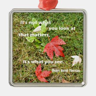 Zitat byThoreau: Es ist nicht, was Sie das Silbernes Ornament